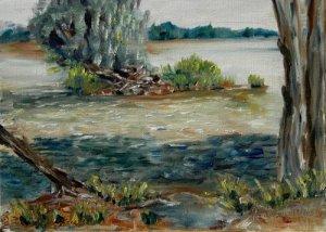 la Loire scintillante