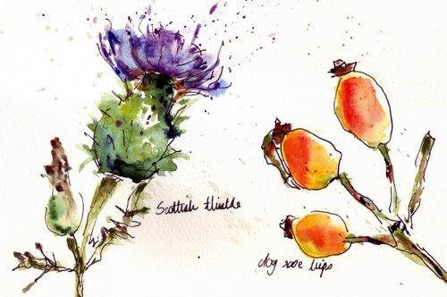 thistle and rosehips