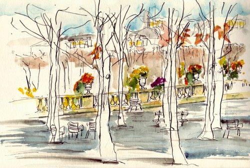 paris-les arbres de jardin de luxembourg