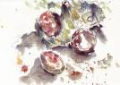 eggs in watercolour 2