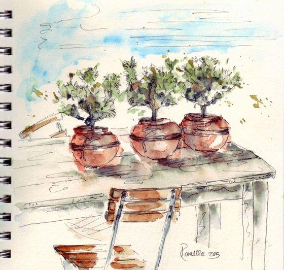 oliviers sketse