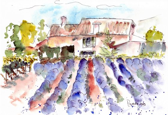 Provence sketch 4