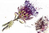 artichaut en aquarelle