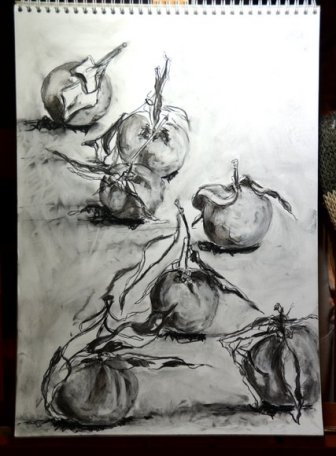 Clementines in charcoal 2672x3629