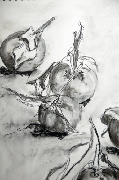 Clementines in charcoal 3264x4928-001