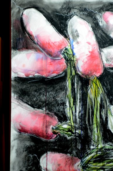 Radishes in watercolor and charcoal 3264x4928
