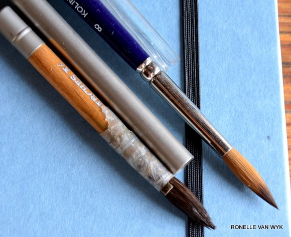 pocket brushes 3330x2715