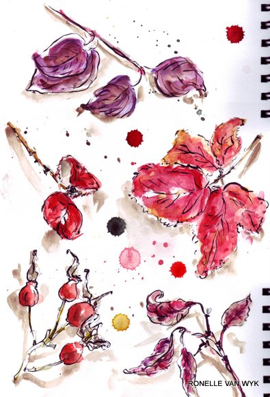 Ronelle's art-sketching November reds