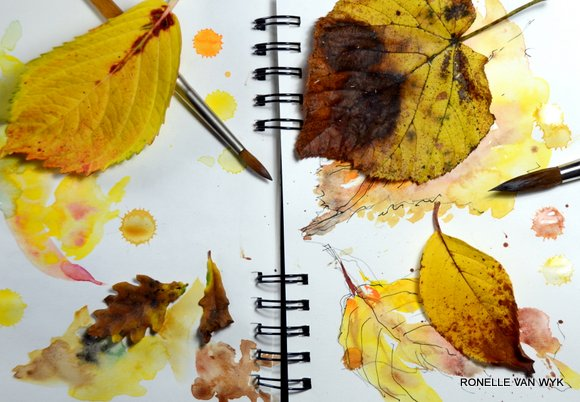 sketching yellow autumn leaves