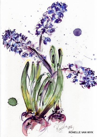 jacinthes bulbes 1