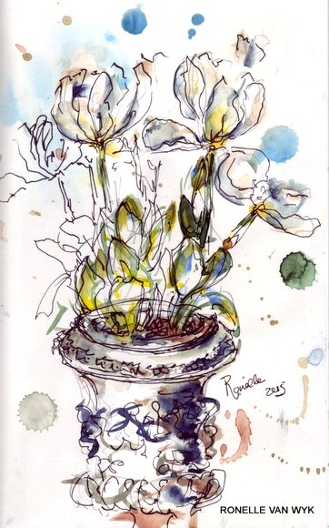 ronelle van Wyk - watercolors - sketching in the garden-001