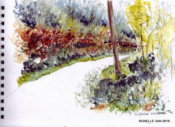 autumn wood ferns
