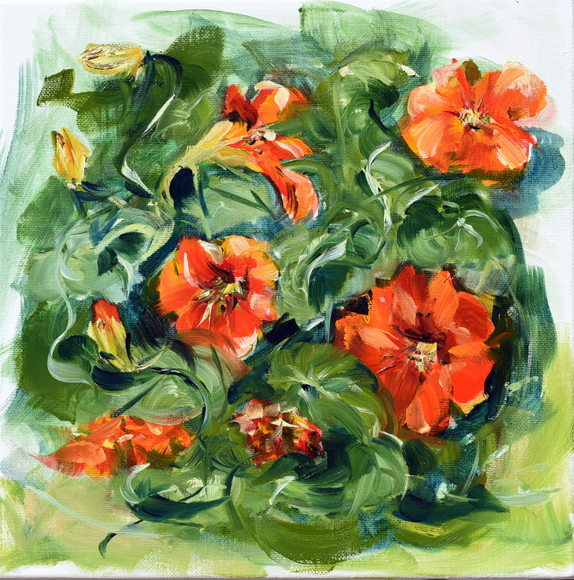 cappuncine-rouges