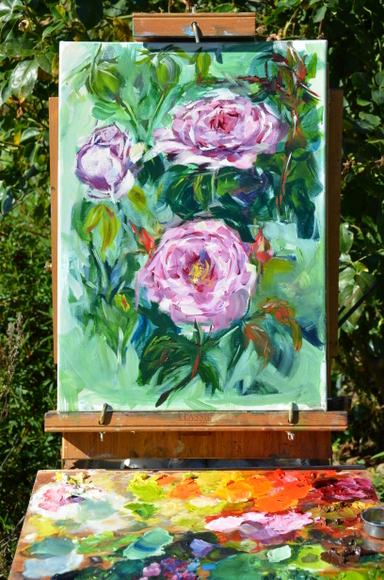rose-generosa-carmeline-003