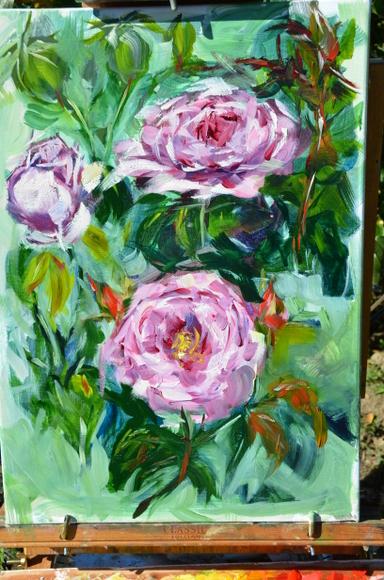 rose-generosa-carmeline-004