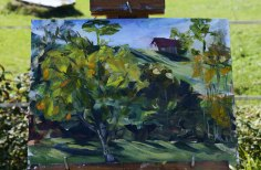 landscape plein air-7006